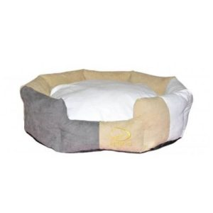 Color Game Dog Bed