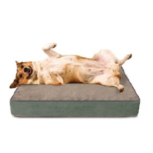 Premium Buddy Bed Large Dog Bed